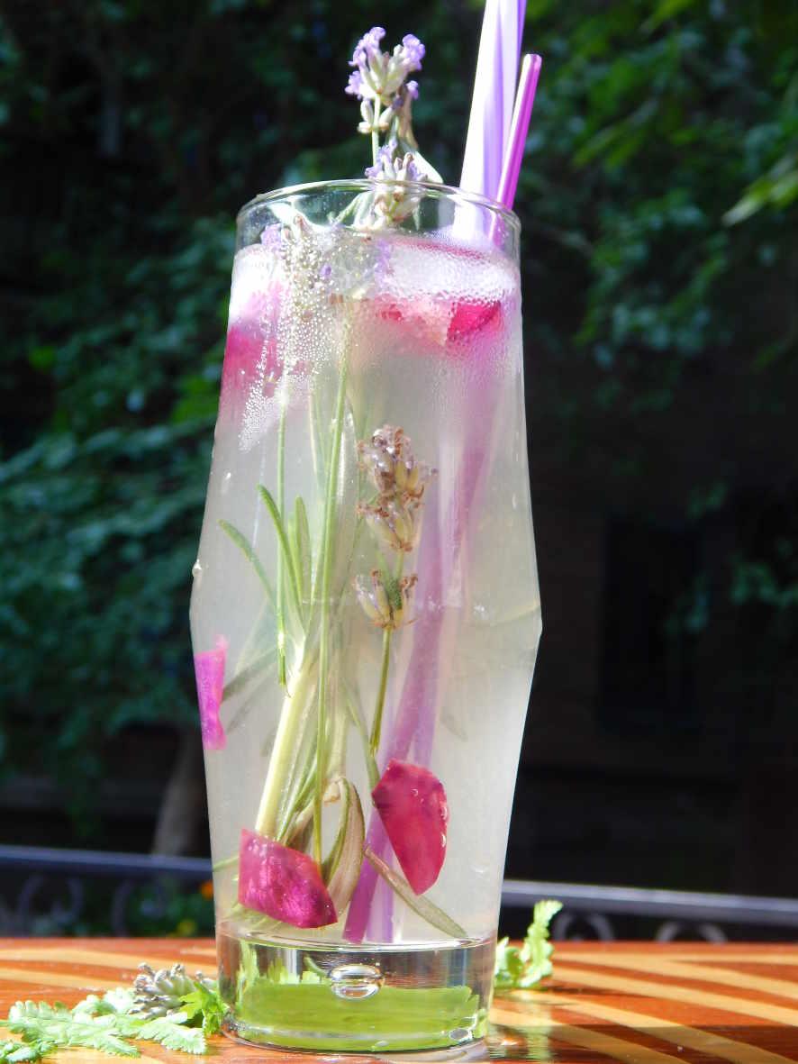 pryany_limonad